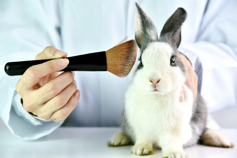 Is jouw cosmetica dierproefvrij?